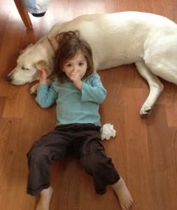 binky pacifier habit in toddlers and preschoolers